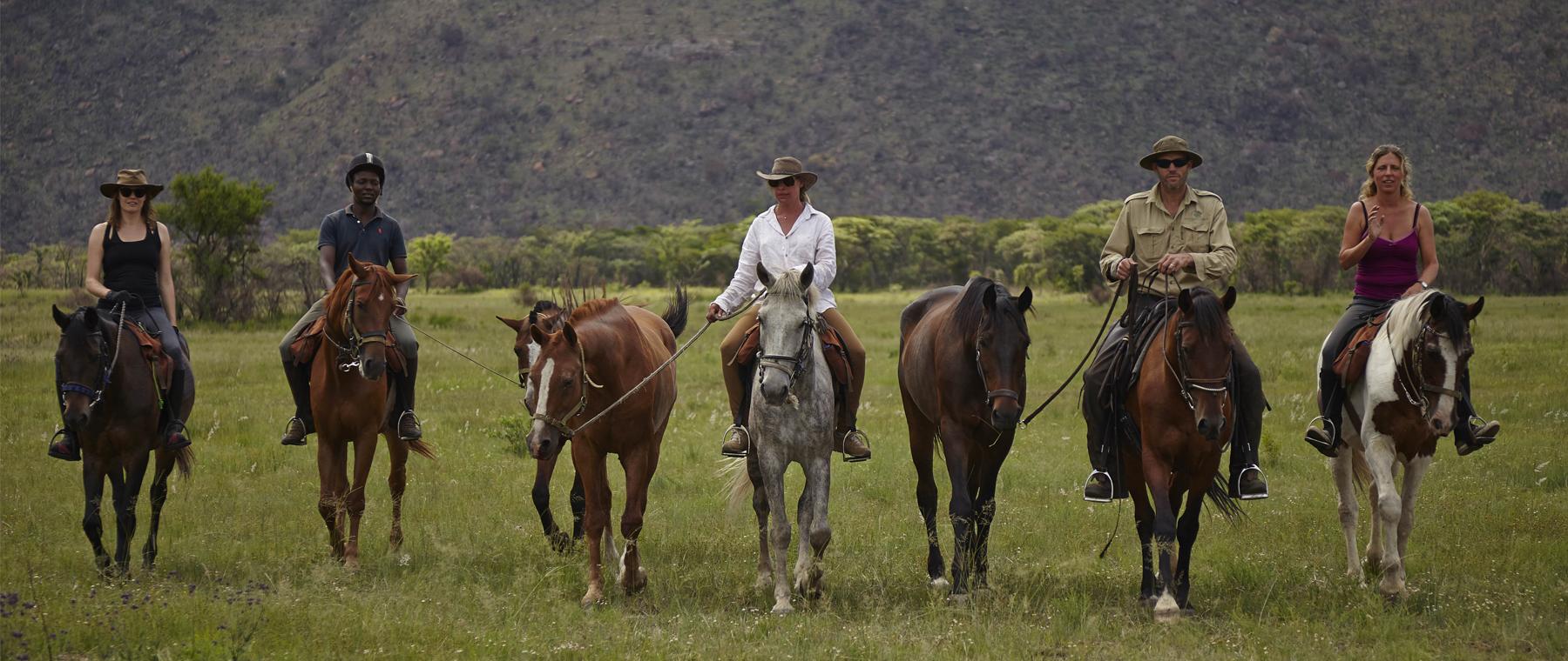 horsesafari4
